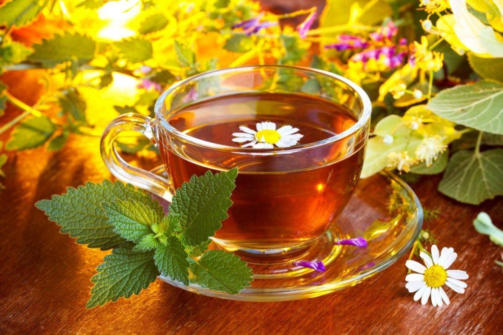 Тибетский чай для похудения: как принимать, цена и отзывы