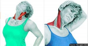 These 16 Extreme Images Will Show Which Body Muscle You're Stressing