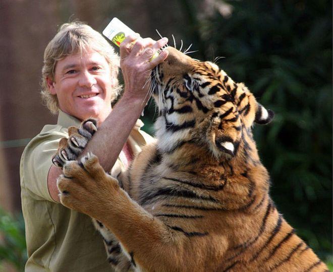 Steve Irwin Death