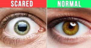 18 Amazing Facts About The Human Body That Will Make You Feel Like an Expert