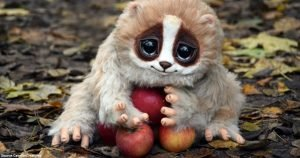 Here Are Top 10 Cute Animals That Might Actually Kill You