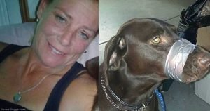 A Woman Duct Taped Dog's Muzzle Shut, Convicted Of Animal Cruelty and Gets No Jail Time
